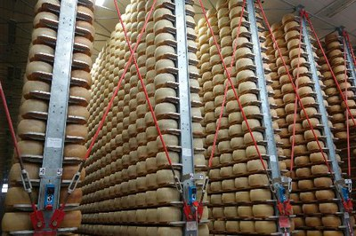 Guided tour to a Parmigiano Reggiano cheese dairy