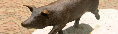 Monument to the pig