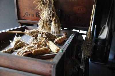 Museo della civiltà contadina a Bastiglia (Museum of rural culture)