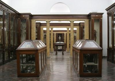 Museo di Anatomia e Teatro Anatomico