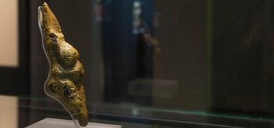 Museo della venere e dell'elefante a Savignano s.p.