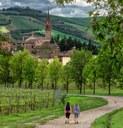 Castelvetro di Modena - Nacchio Brothers (16).jpg